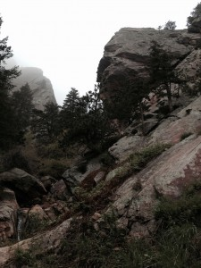 Approach Trail in Skunk Canyon