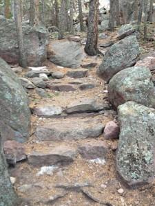 Northwest Streak Trail