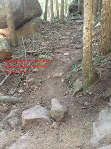 Whipped Kreem Trail